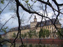 У дороги стоял дуб. А сквозь его ветви проглядывал Вроцлавский университет.
