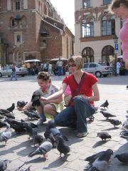 Венеция тонет, а голуби её теперь обосновались в Кракове...