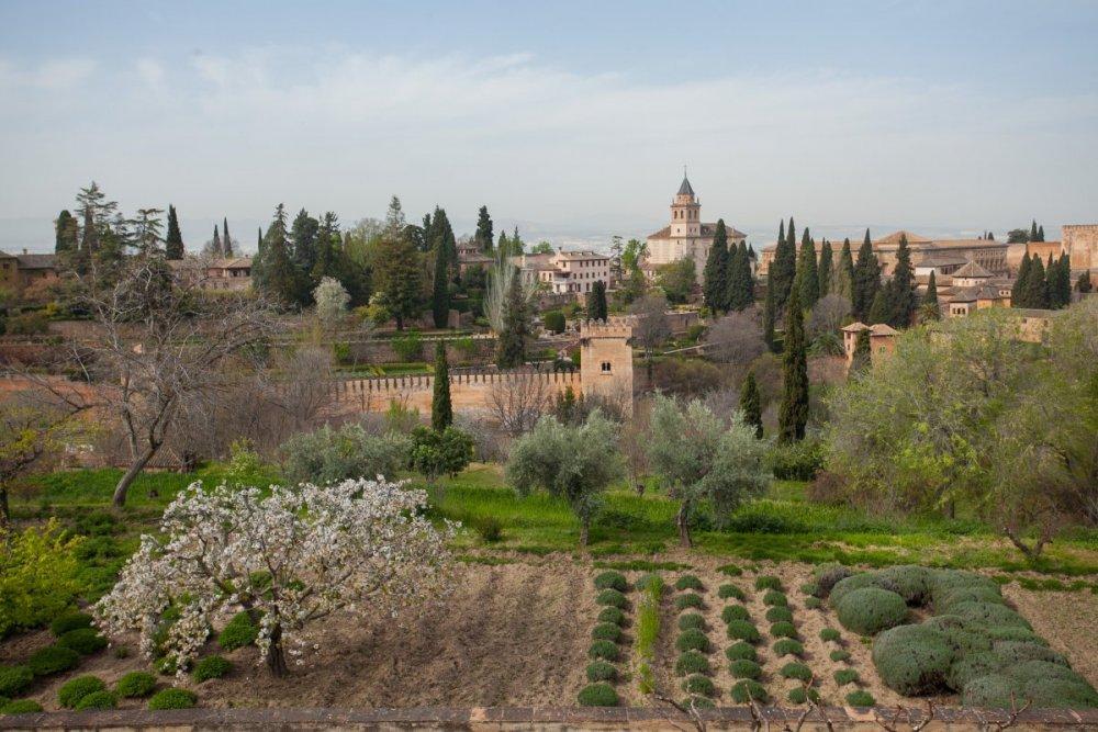 Альгамбра-45.jpg