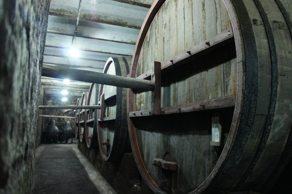 DSC03401     Армения Ереван  коньячный завод %22Ной%22  .JPG