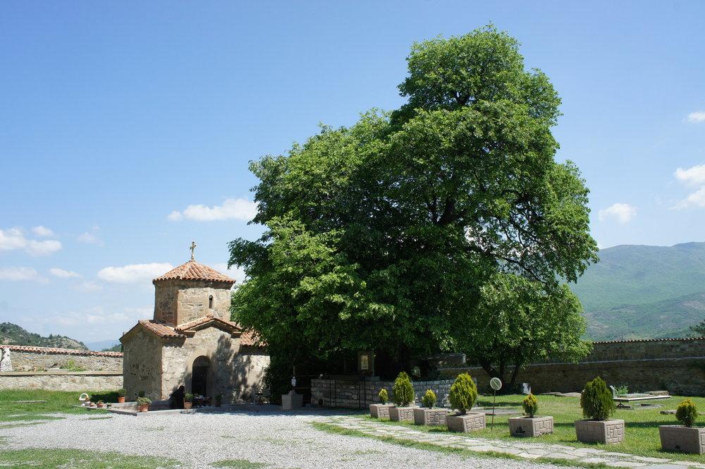 DSC02645  Грузия Мцхета монастырь Самтавро  .JPG