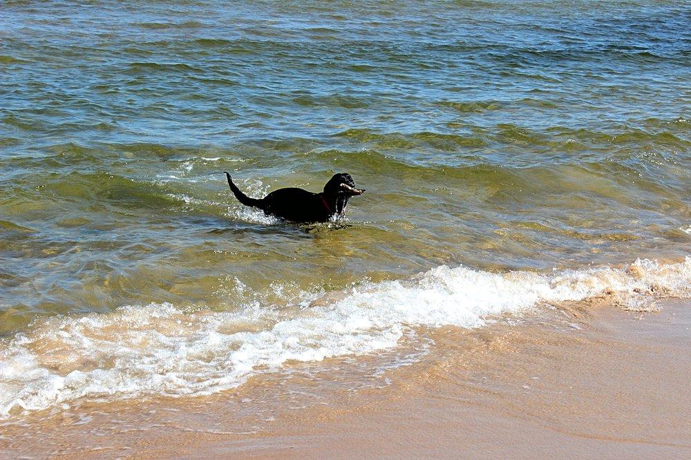 IMG_3710-пляж_Fotor.jpg