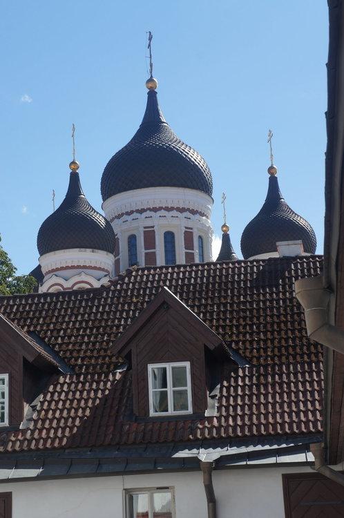 DSC04893.  Таллин. Эстония    .JPG