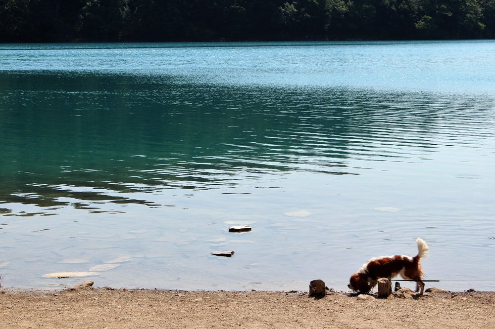2015_Хорватия_ Плитвицкие озера_3.jpg