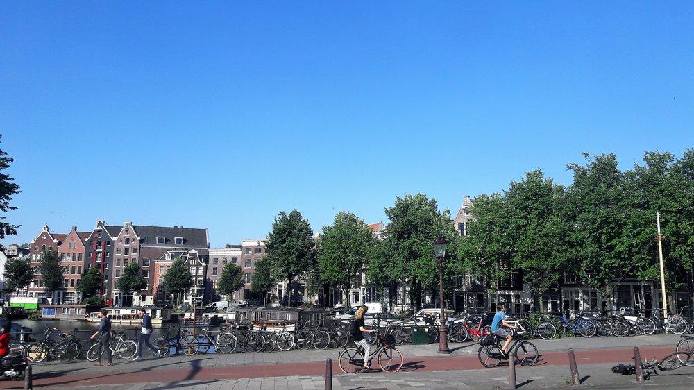 Амстердам( из автобуса).jpg