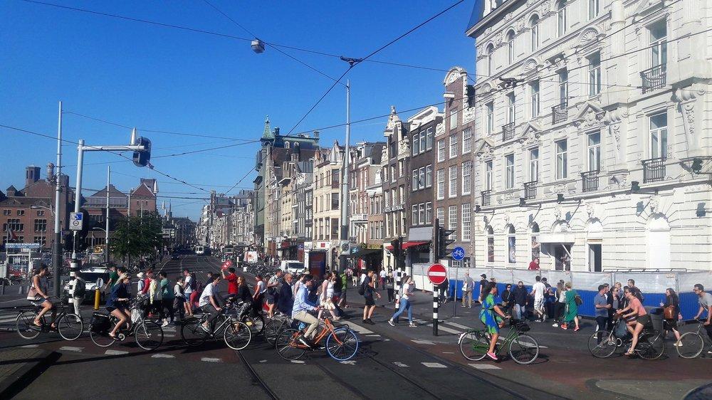 Амстердам( из автобуса5).jpg