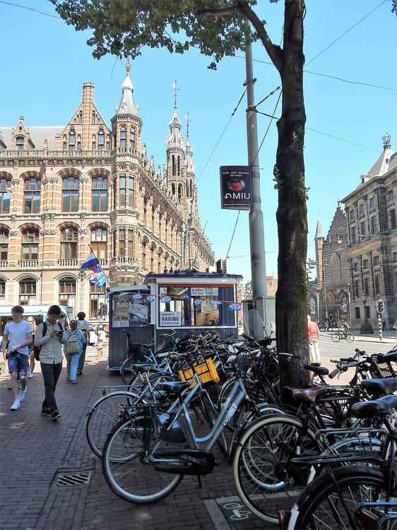 Амстердам( киоск).jpg