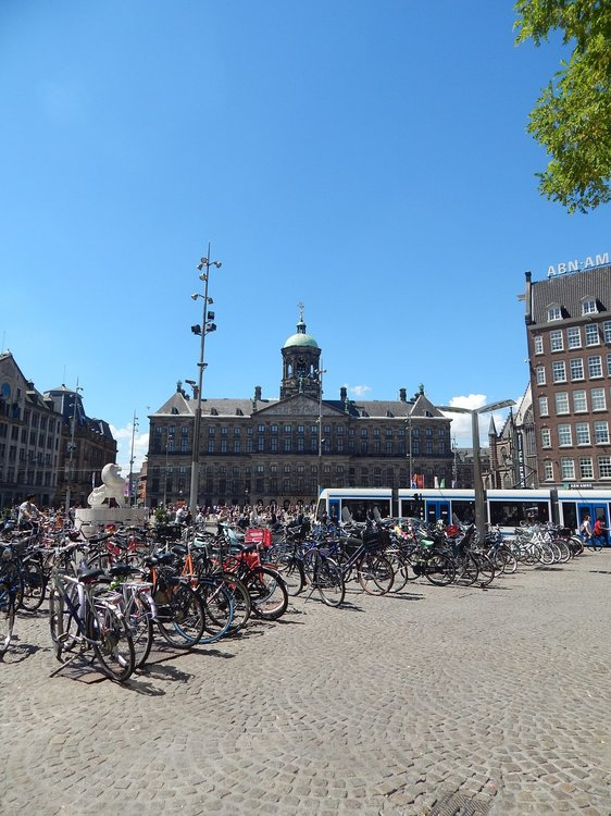 Амстердам( велосипеды4).jpg