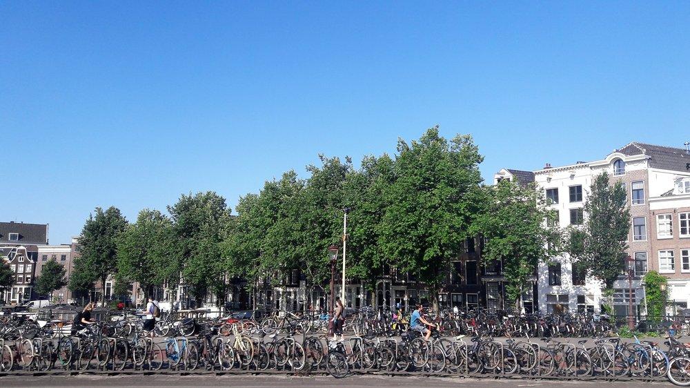Амстердам( велосипеды5).jpg