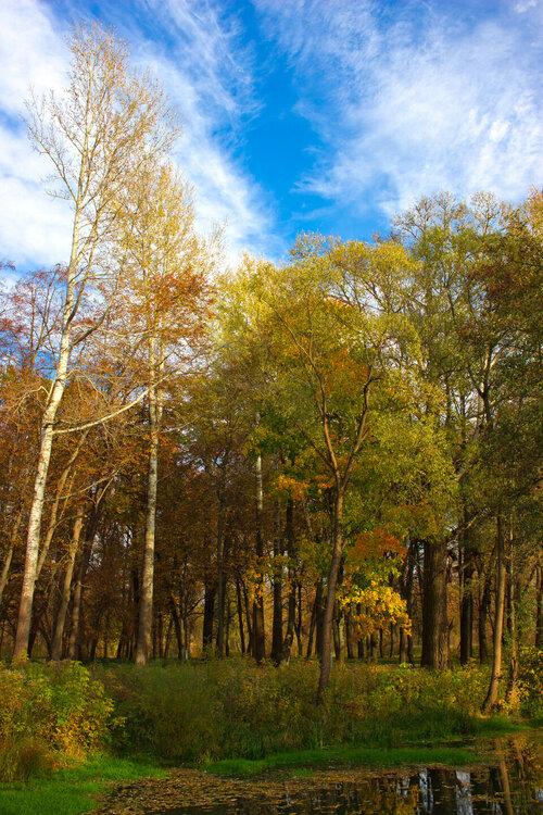 IMG_4926 Осенние Баташи.jpg