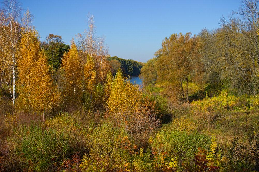 IMG_5153 Белоусовский парк Цвета осени.jpg