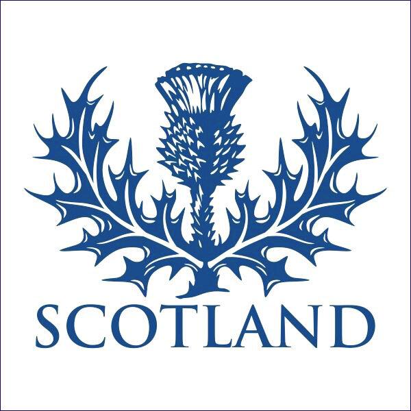 Scottish Thistle.jpg