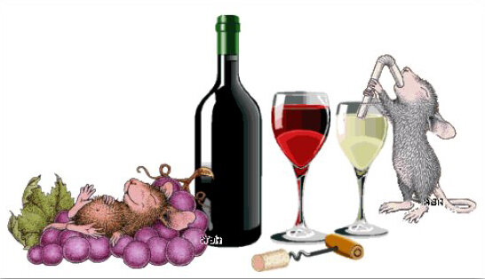 winevswater.jpg