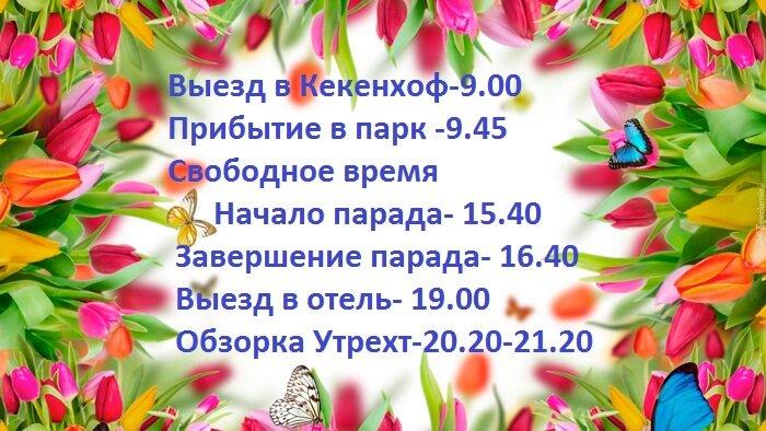 231987_kwiaty_tulipany_motyle.jpg