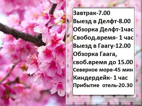 1268541231_nature_seasons_spring__006105_-kopiya.jpg