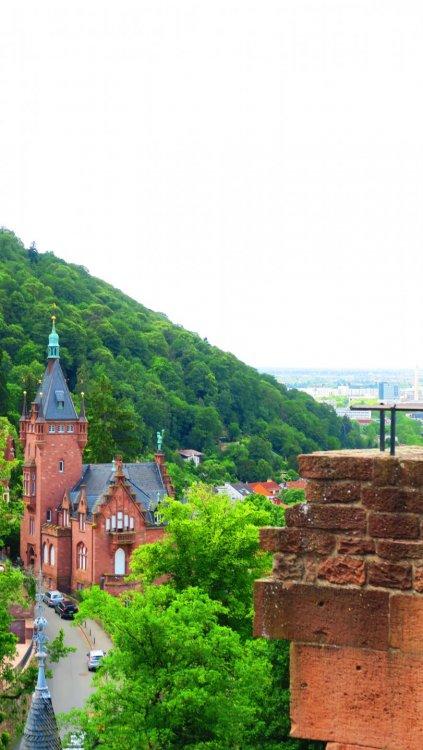 Солнечная Германия 135.jpg