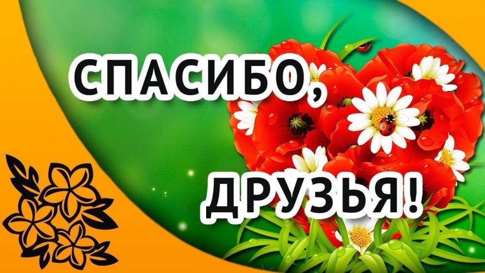 298ef9ace5d92a708b339f663ae8a0ae.jpg