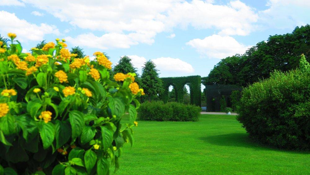 Солнечная Германия 183.jpg