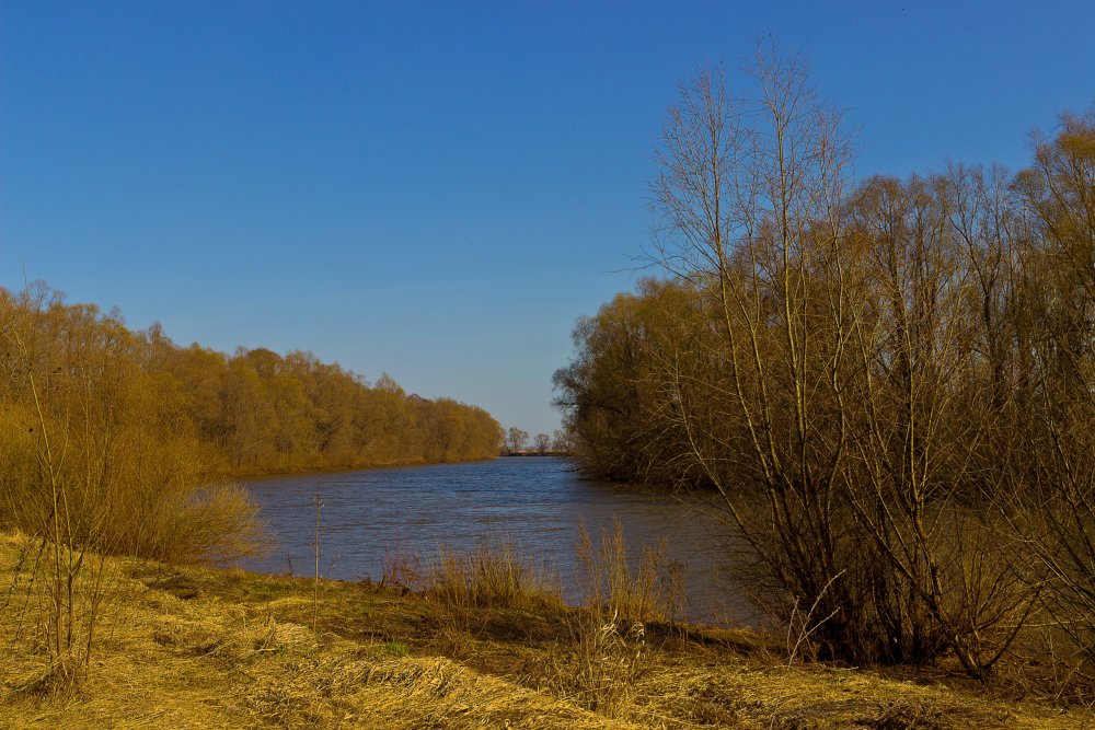 IMG_6534-1 Елабуга Река Тоймо.jpg