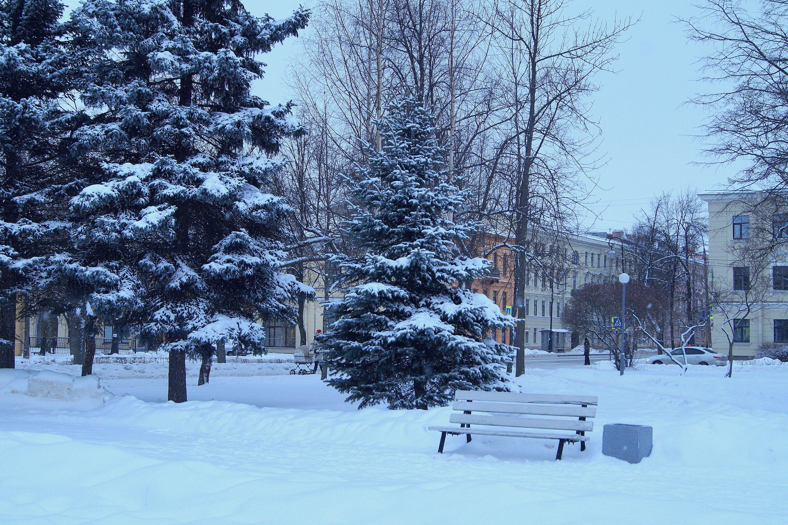 Зимний Кронштадт