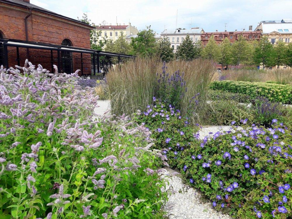 Травяной сад.jpg