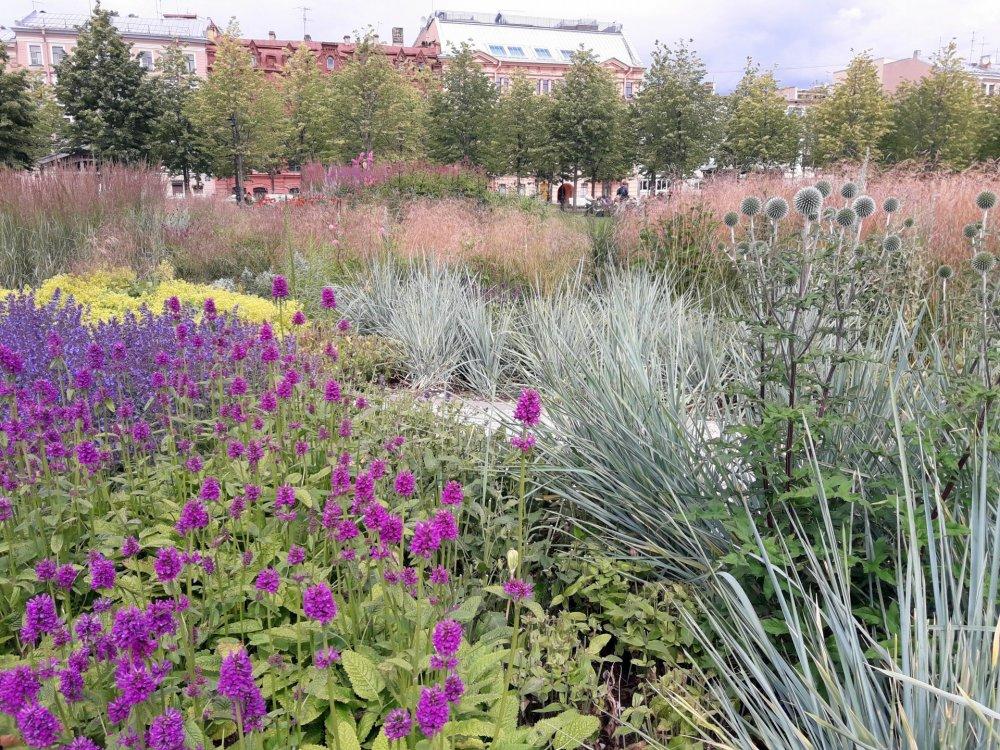 Травяной сад (2).jpg