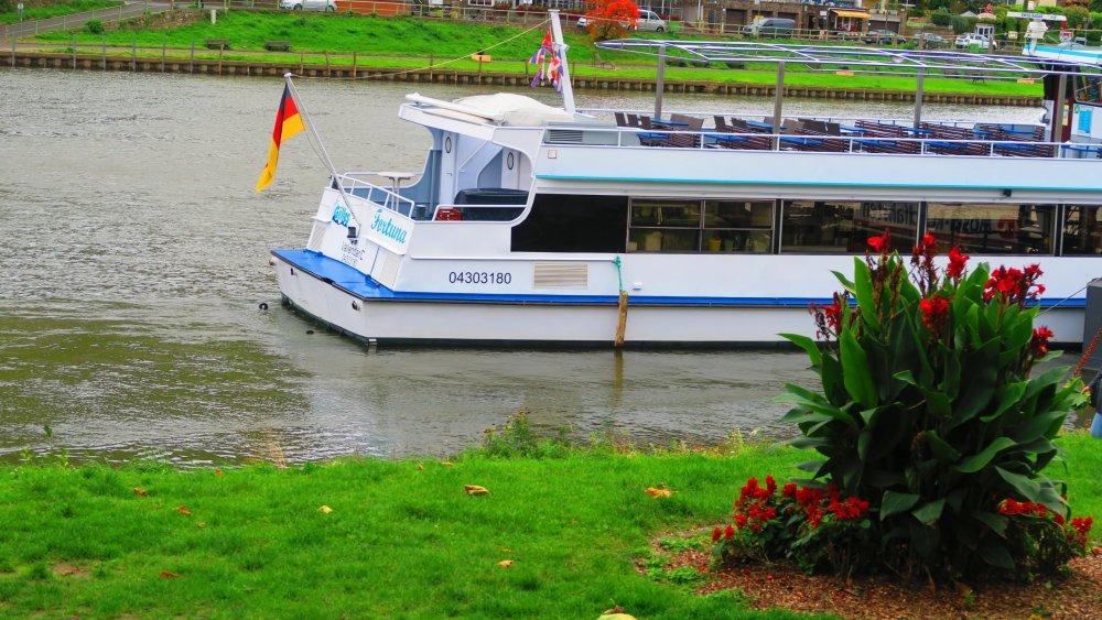 Рейн 133.jpg