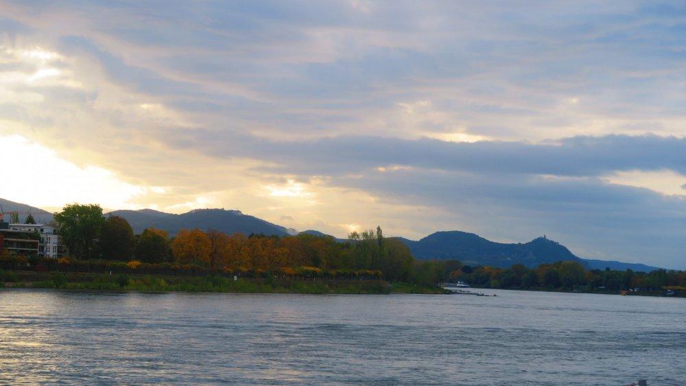 Рейн 762.jpg