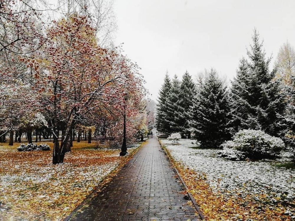 Пришла зима.jpg