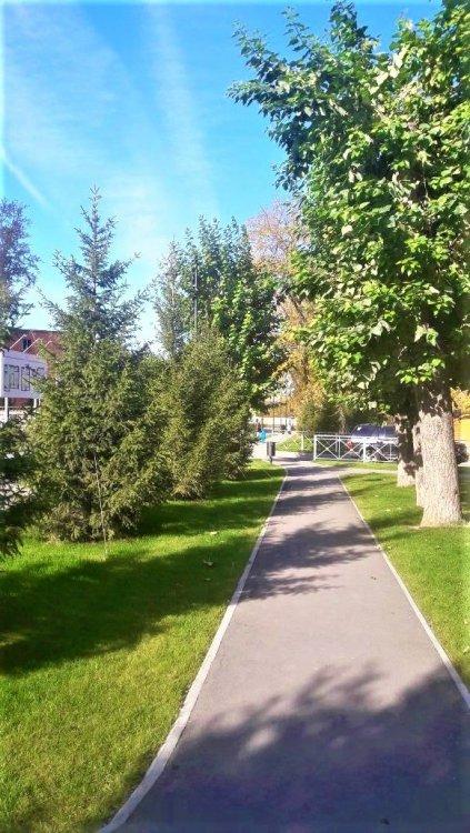 Осень, осень14.jpg