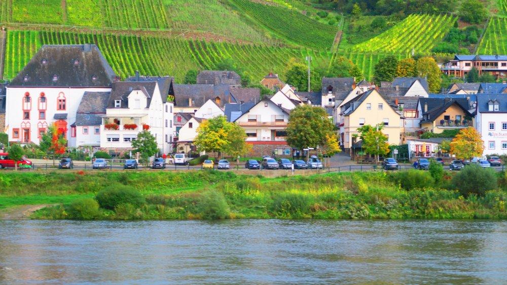 Рейн 153.jpg