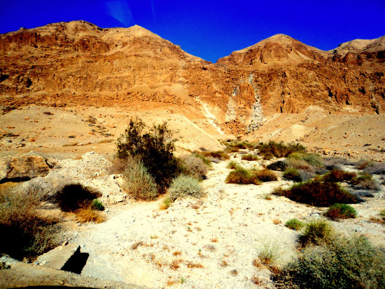 ИЗРАИЛЬ. Иудейская пустыня и Мертвое море, 28.09.2019 (продолжение)