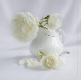 Красота-и-нежность-цветочных-натюрмортов-78-шт-фото-Комментарии-LiveInternet-Российский-Сер.jpg