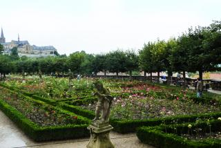 Сад роз.jpg