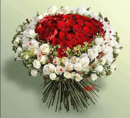 цветы.jpg