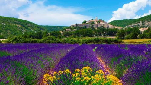 Прованс, Франция.jpg