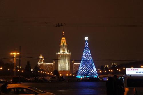 DSC06219  Москва 3.01.17 г.JPG
