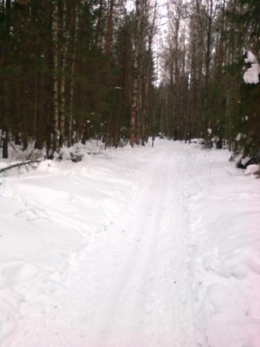 2018_02_18 На лыжной прогулке 002.jpg