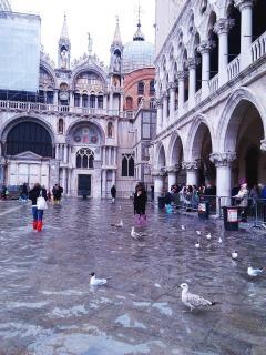 7 Венеция (42).jpg