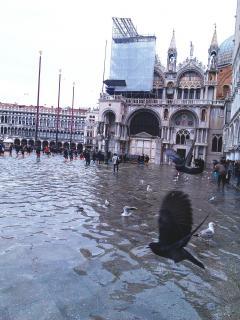 7 Венеция (41).jpg