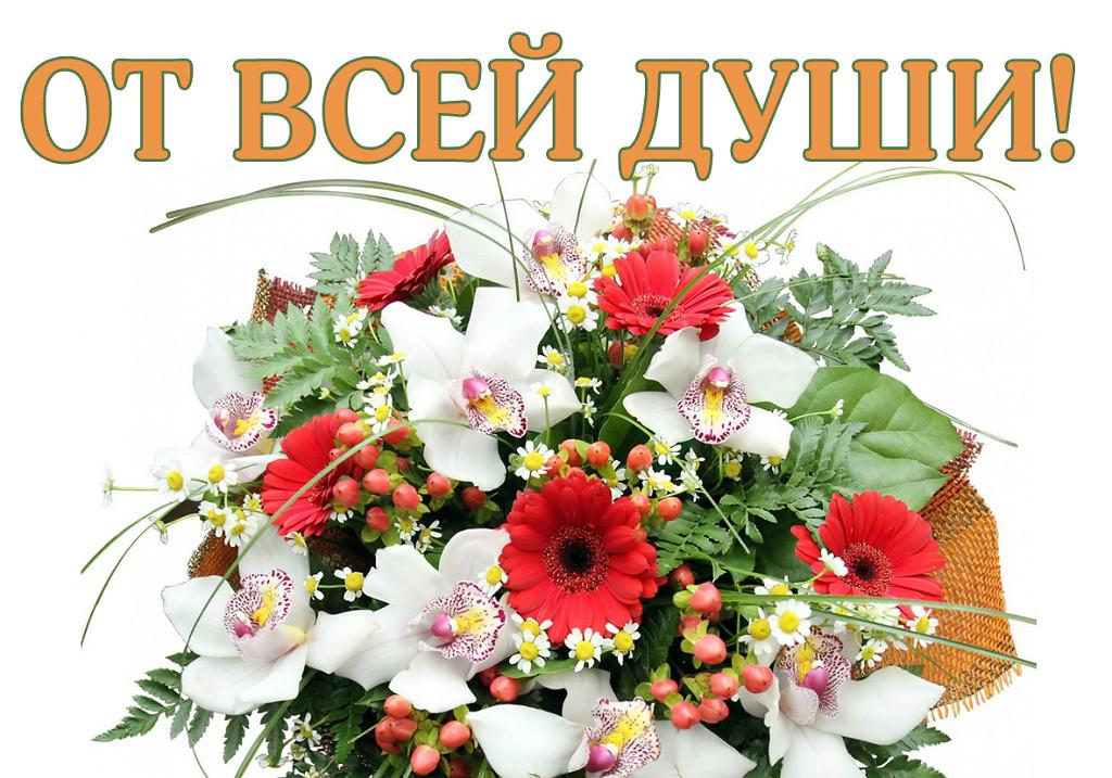 растение картинки с днем рождения от души уроку русского