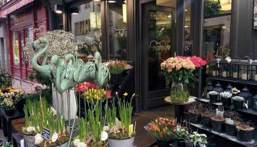 Страсбург цветы.JPG