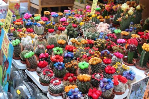 14.05.12_353_Амстердам_Цвет.рынок.JPG