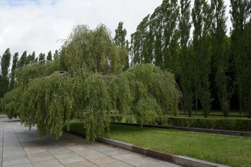 14.05.11_016_Берлин_Трептов парк.JPG