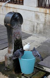 Италия Венеция 13 сентября (482).JPG