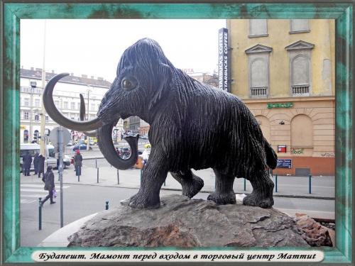 DSCN1978 Будапешт Мамонт.jpg