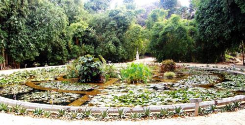 Aquarium01_Orto_botanico_Palermo.jpg