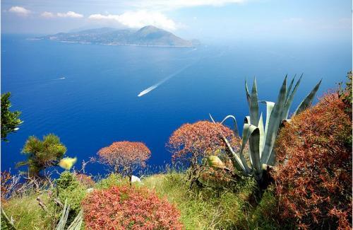 Capri_04.jpg