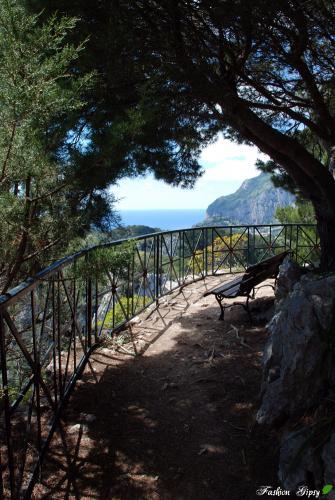 Capri_T02.jpg