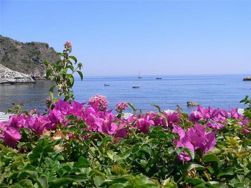 Siciliya-37-(taormina).jpg